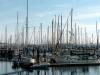 dock-port-townsend-0005-800